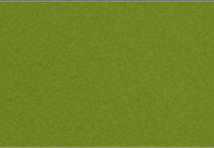 Premium Color Olive Green